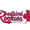 Redbird Rookie Full Color Image-comp